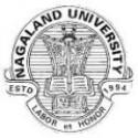 Nagaland University, Lumami